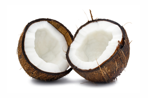 how to know if the coconut is bad